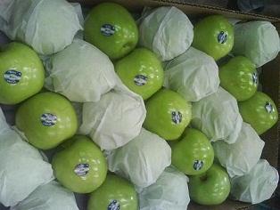 Предлагаем  яблоки  из Аргентины