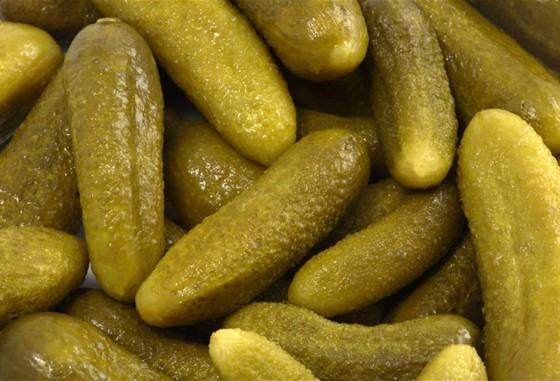 Консервный завод купит огурцы соленые