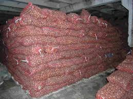 Картофель семенной и продовольственный