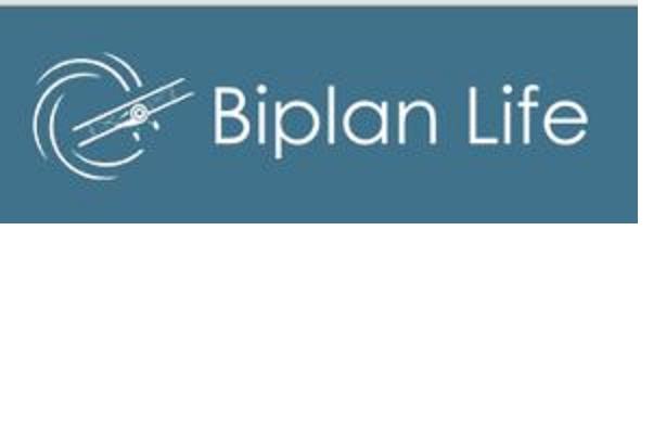 МLМ-бизнес Проект BiрlanLife