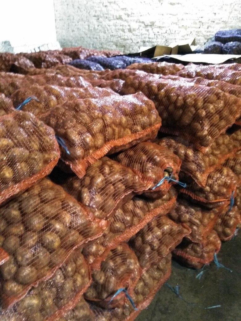 Картофель оптом Невский калибр 6 цена 12,5 рубкг