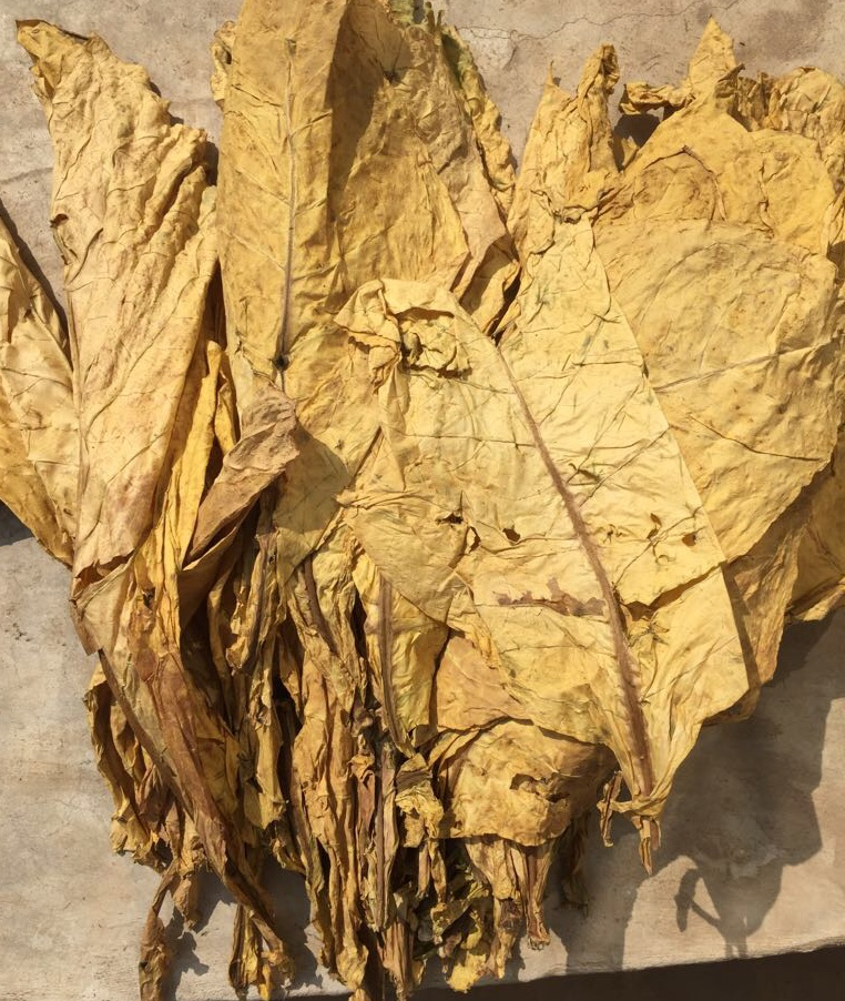 Продаем табачное сырье, табак