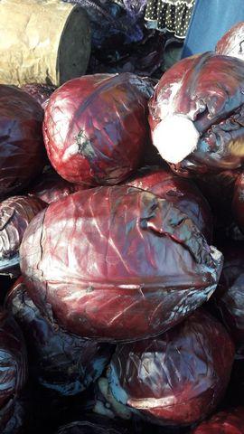 Капуста краснокочанная. Вес кочанов от 1 до 2,5 кг. Урожай 2017. Прекрасное скла
