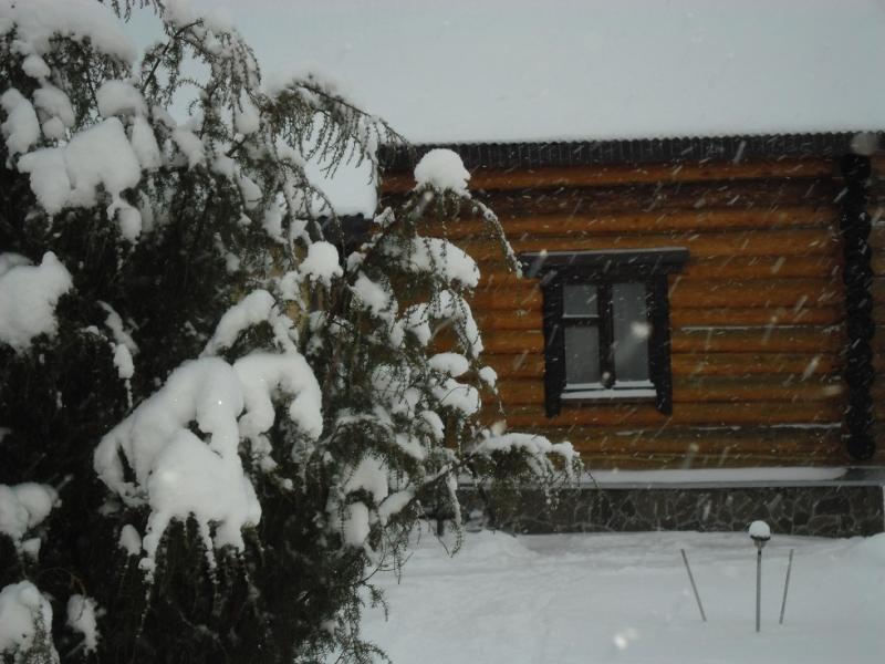Загородный дом посуточно Новый год