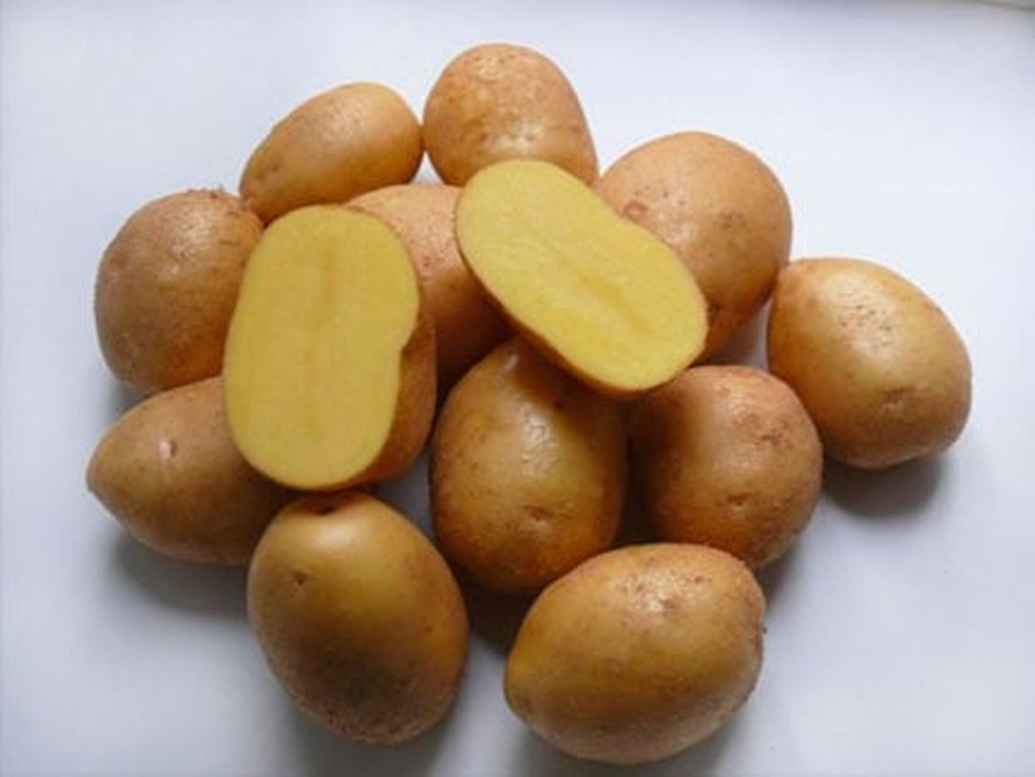 Под мойку картофель оптом из Москвы