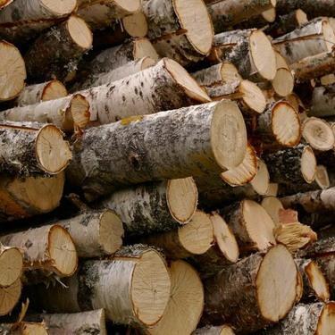 Продажа колотых дров и щипы с доставкой СПБ