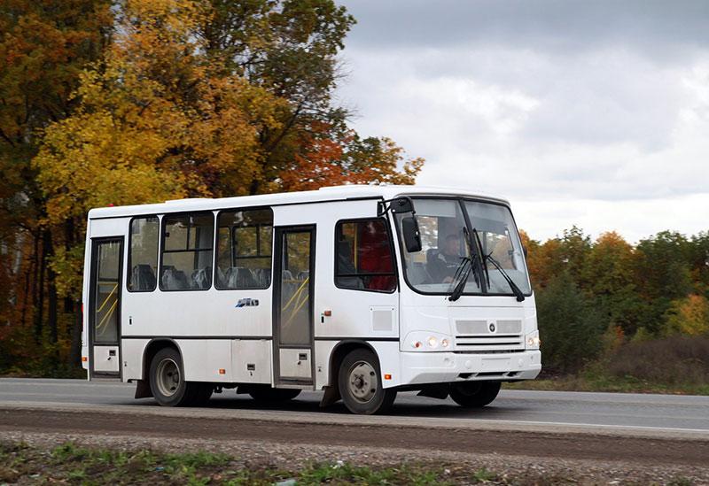 Срочно нужны автобусы ПАЗ на 25-30 мест