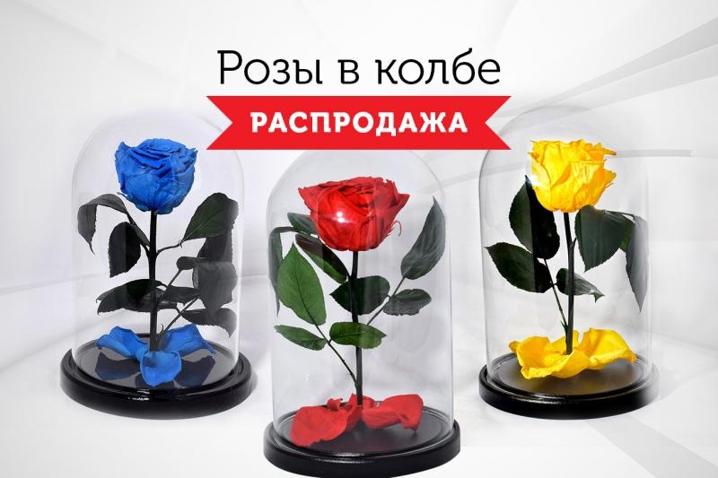 Розы в колбе - Распродажа