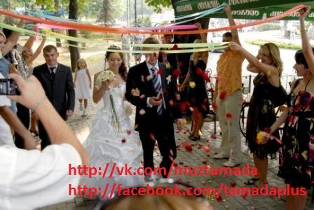 Ведущий, живая музыка, ди джей, тамада на свадьбу в Киеве