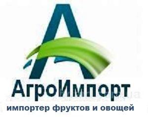 Прямой импорт фруктов и овощей из Узбекистана, Молдовы, Китая, Египта, Ирана.