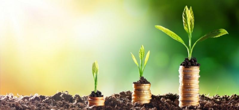 Ищем бизнес проекты для инвестиций.