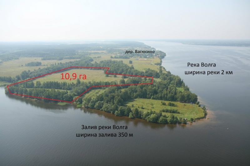 Участок 10,9 га у дер. Васюсино Калязинского района Тверской области